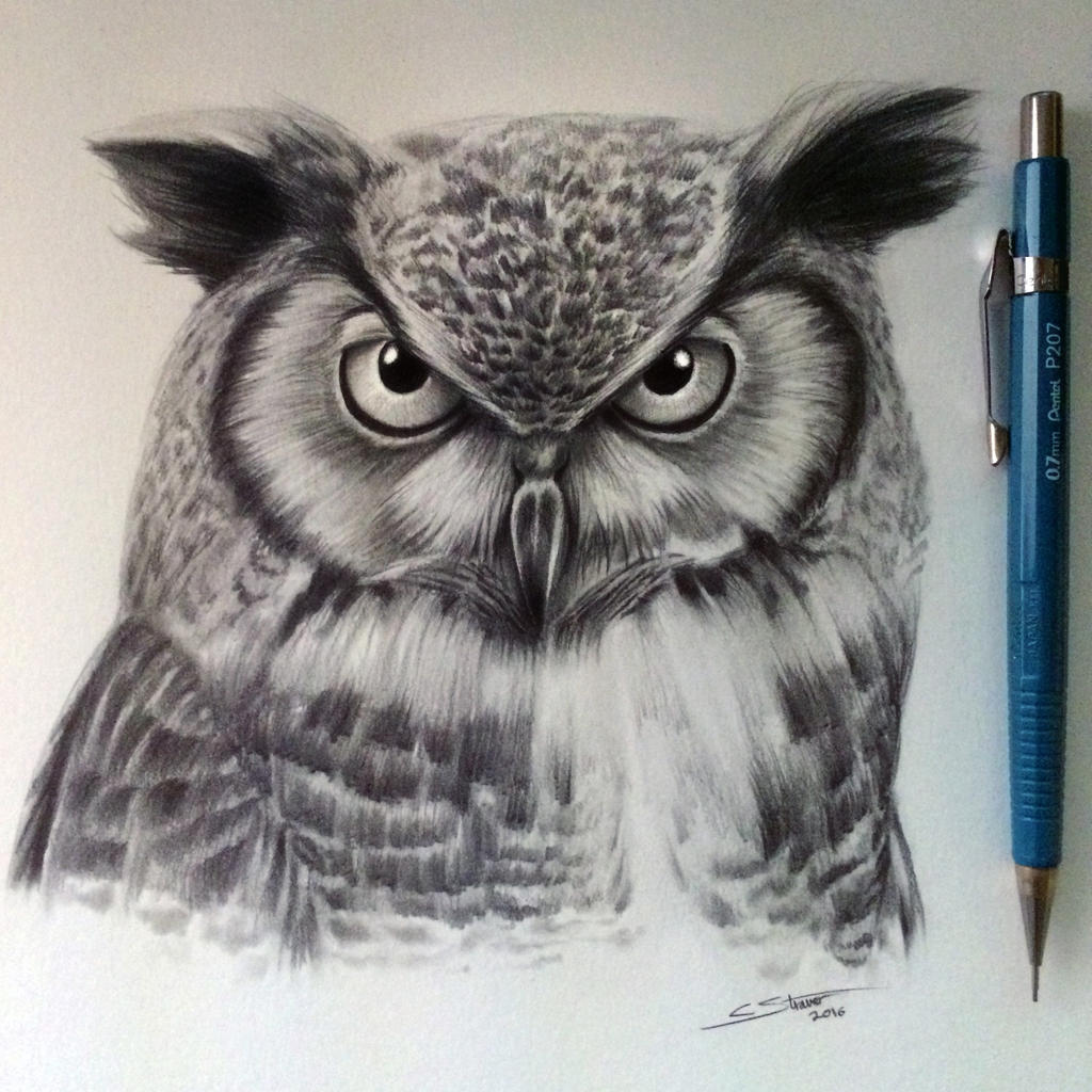 Uncategorized Drawing An Owl owl drawing by lethalchris on deviantart lethalchris