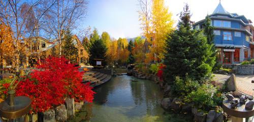 Fall's Colours
