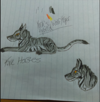 Wolf/Tiger Hybrid by FiveHorses
