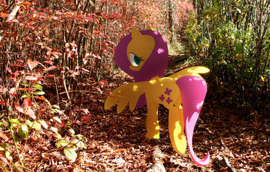 stroll with Fluttershy