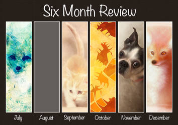 Six Month Review by B-ROArtandDesigns