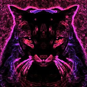 moon kitty by fatalframe16