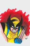 Wolverine Headshot Colored