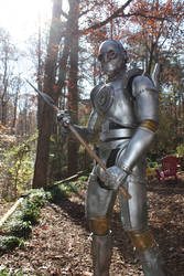 Tin Man suit from 'Heartless'2
