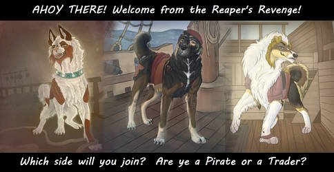 A Pirate Welcome