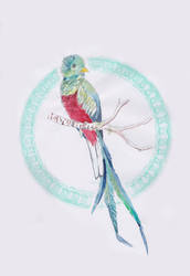 Quetzal by Arahiriel