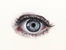 Eye13 by oksanadimitrenko