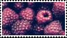 raspberries aesthetic stamp by hematology