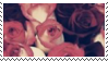 pink roses aesthetic stamp by hematology