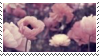 pink flowers aesthetic stamp