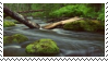 creek aesthetic stamp by hematology