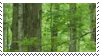 forest aesthetic stamp by hematology