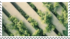 plants + fence aesthetic stamp by hematology