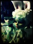 Rabbit Sisters - WIP