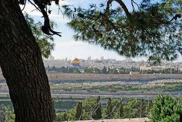 Temple Mt from Mt of Olives by dpt56