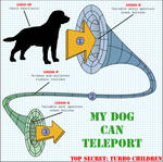 My Dog Can Teleport