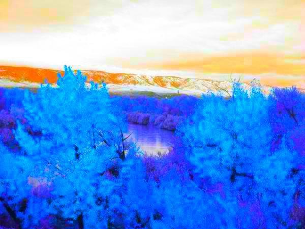 Blue Trees, orange skies. by anniemscluv93