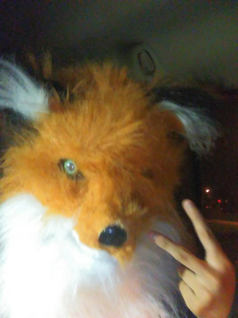 My Fox Mask by aloynna