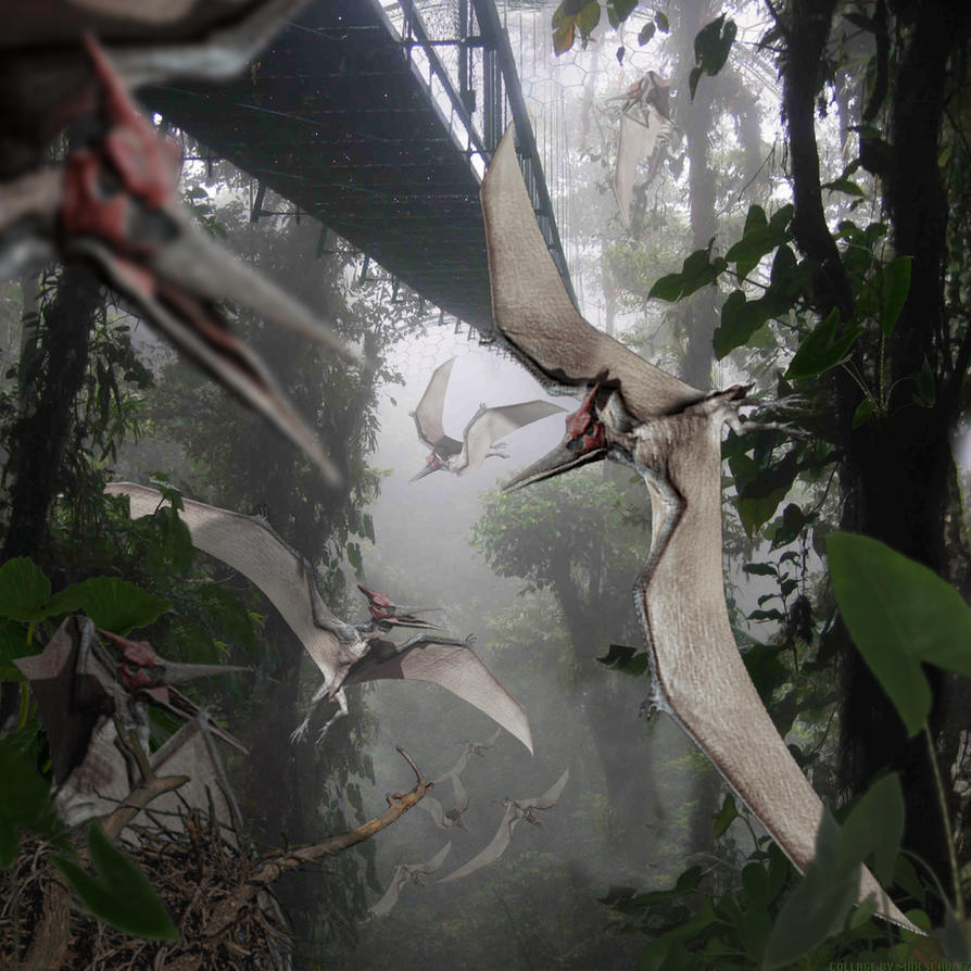 Pteranodon of Jurassic World by urbnvampslayer on DeviantArt