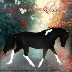 Lost In Darkness - HEE Art by Kayleighxx97