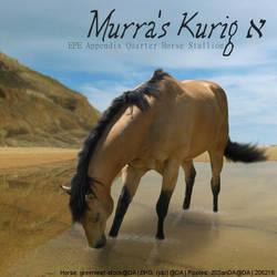 Murra's Kurig - HEE Art by Kayleighxx97