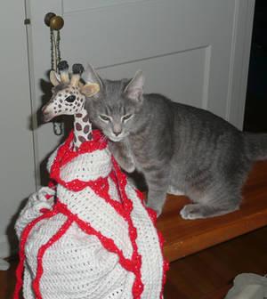 Kitty loev crochet