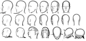 Reference Heads