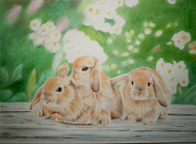 Little Fluffy Bunnies by annakoutsidou
