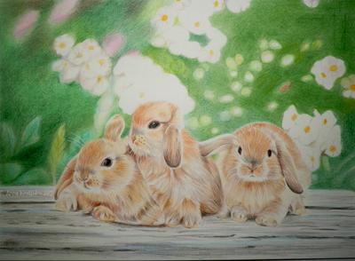 Little Fluffy Bunnies by annakoutsidou