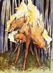 3 headed wolf