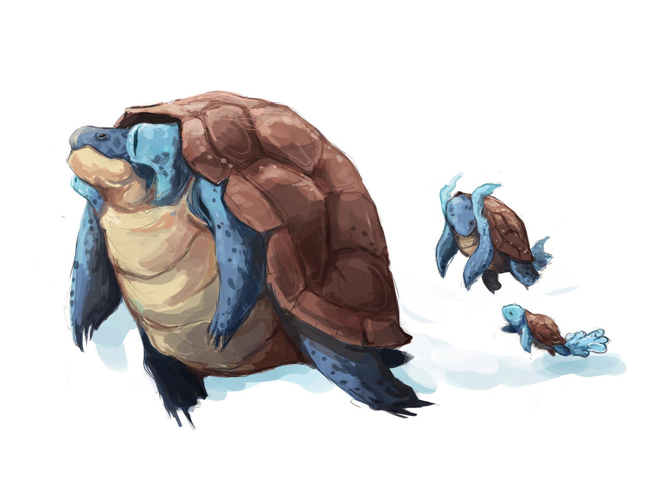 Real Life Pokemon Squirtle   www.imgkid.com - The Image ...