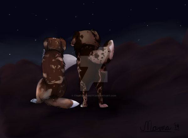 i will always be by your side by 77marmaduke77