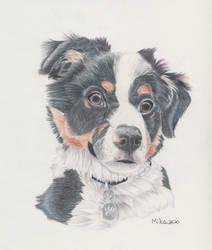 Puppy Portrait! [Comm] by MikViz