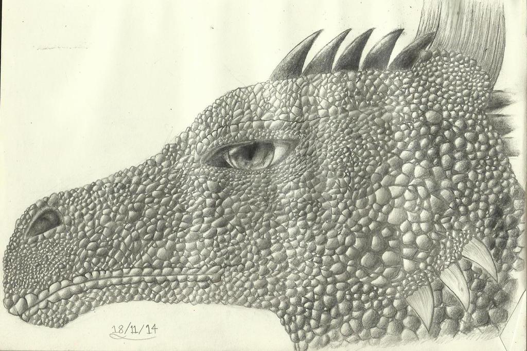 Dragon by DarkUmbreon12