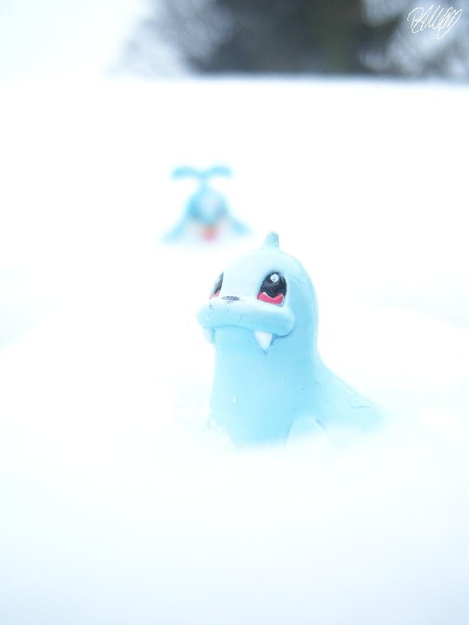 Snow by amarinimo