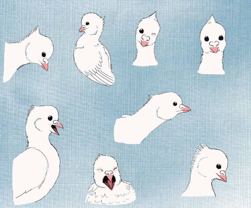 Birdfaces9 by Joysweeper