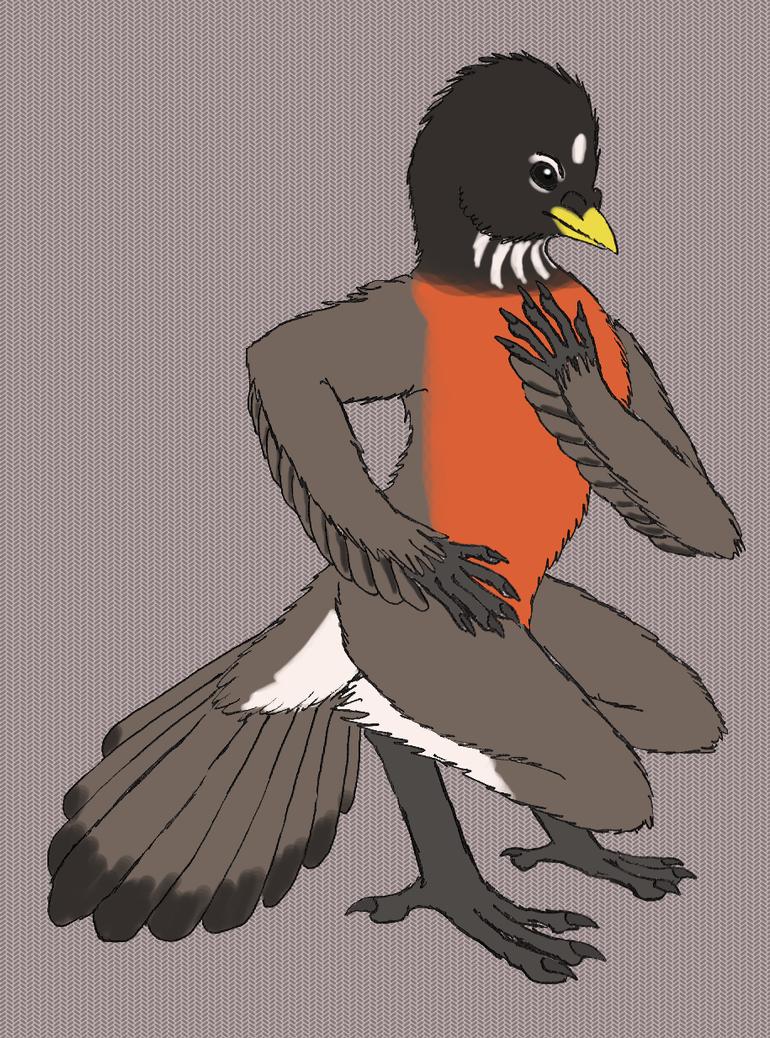 Robin by Joysweeper