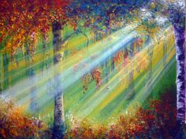Rays by AnnMarieBone