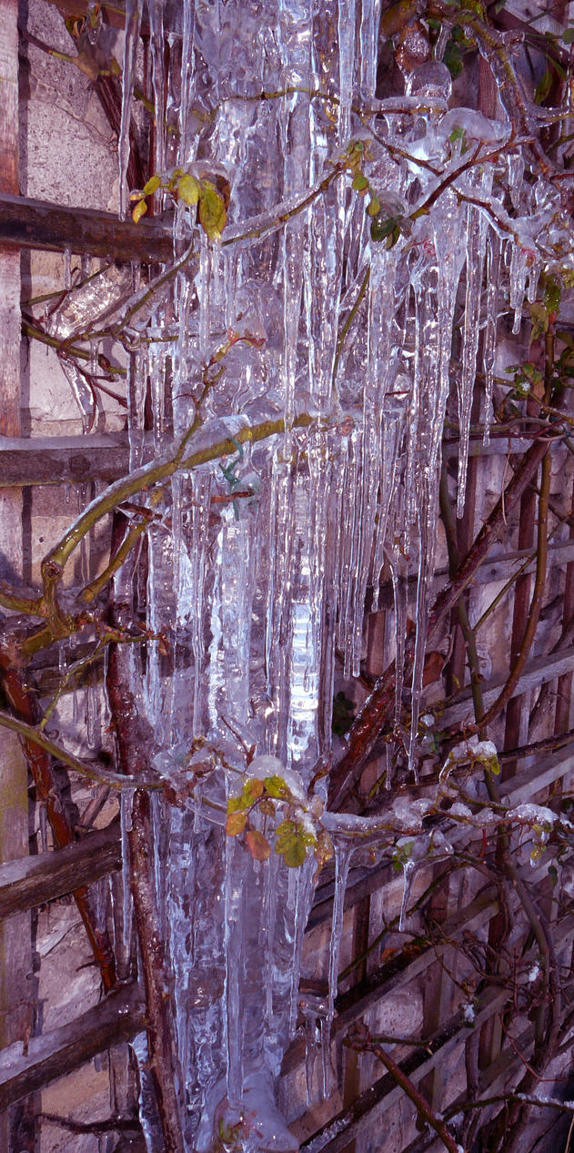 Icicles by AnnMarieBone