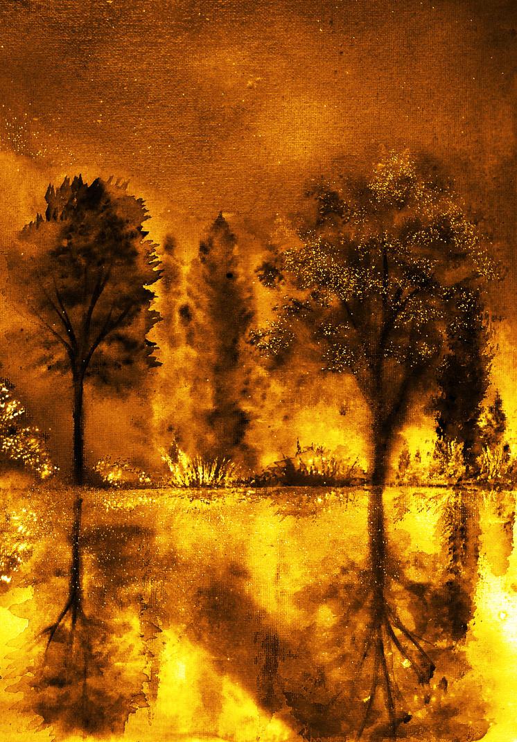 Fire of Angels by AnnMarieBone