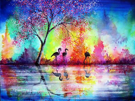 Flamingo Waters