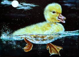 Midnight Swim by AnnMarieBone