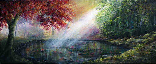 Lily Pond by AnnMarieBone
