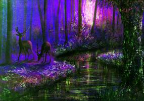 Enchanted Water by AnnMarieBone