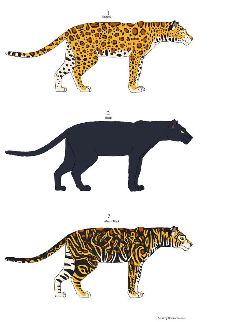 Cheetah Leopard Hybrid Www Imgkid Com The Image Kid