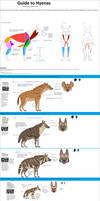 Guide to Hyenas(remake)