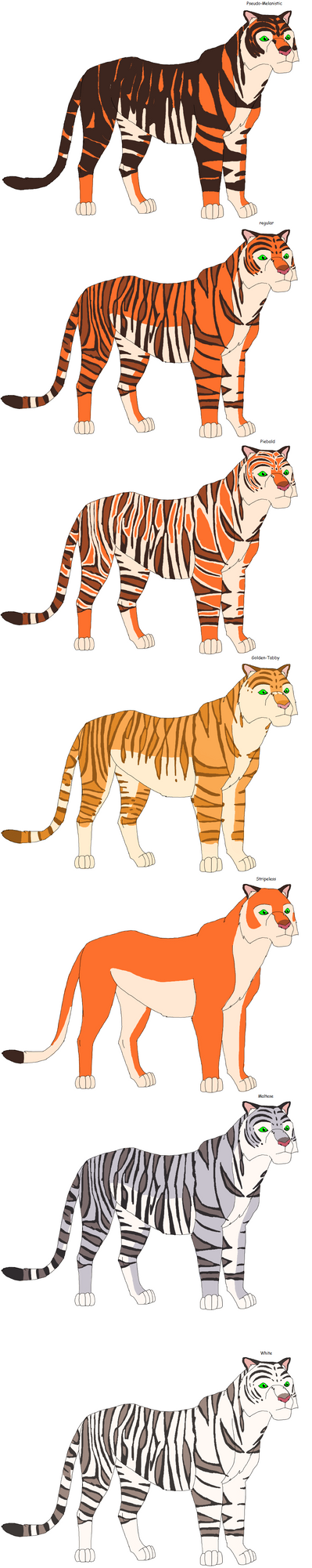 Tiger by Patchi1995