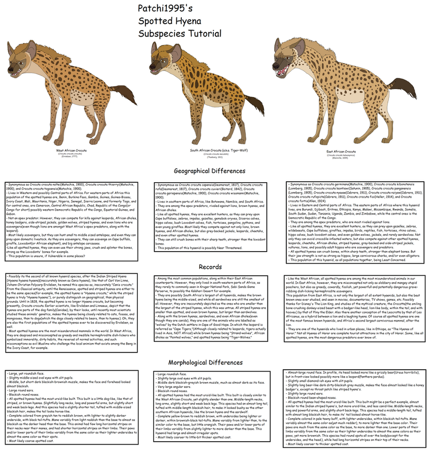 Patchi1995\'s Spotted Hyena subspecies tutorial by Patchi1995 on ...
