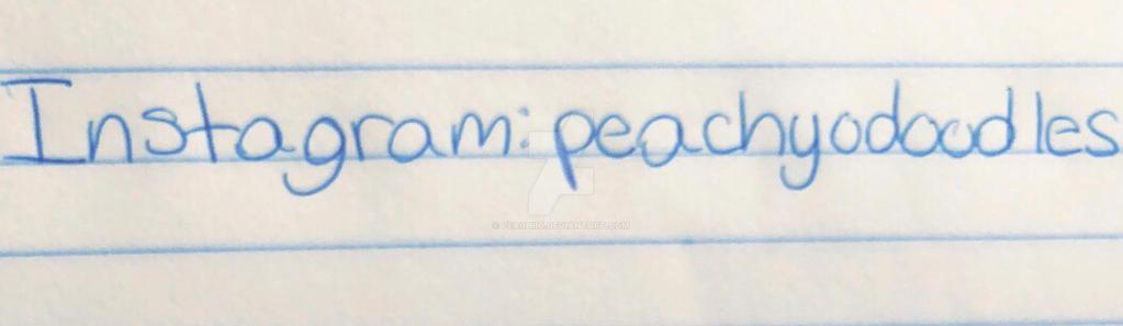 New Instragram: peachyodoodles