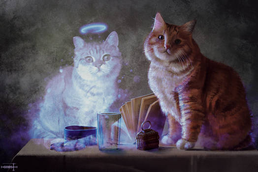 The cat and the ghost of his girlfriend